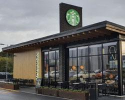 Starbucks Paisley